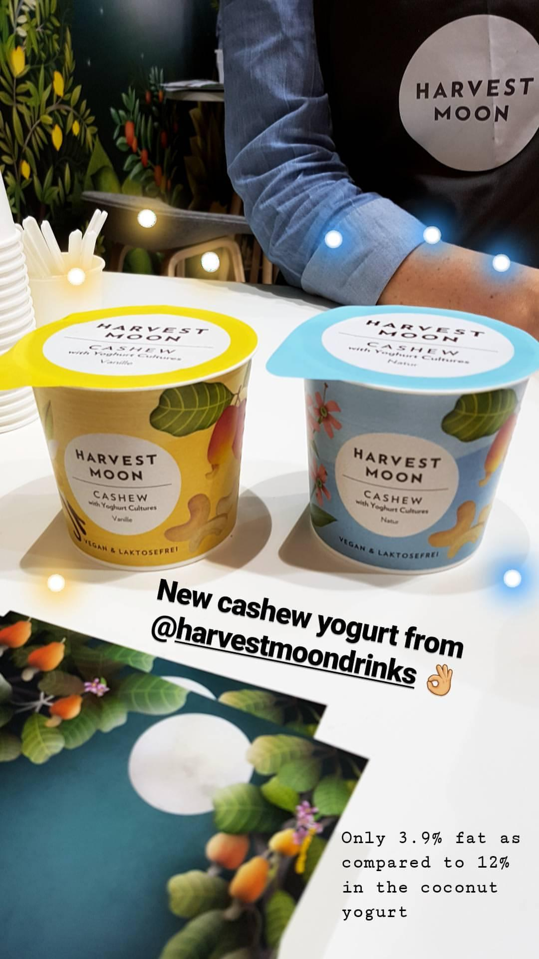Cashew Yogurt - Harvest Moon